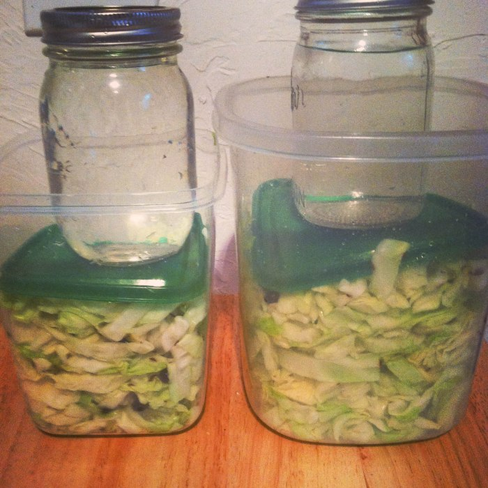 Fermentation at home! Make your own Sauerkraut from scratch!