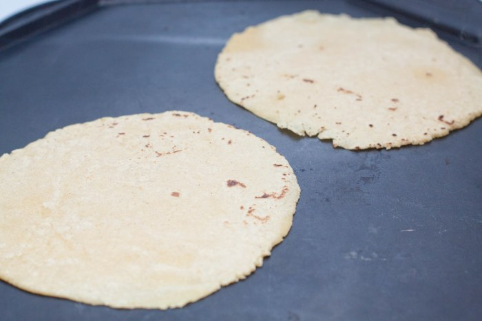 Skip the store bought. You can make your OWN Corn Tortillas and Chips From Scratch with just 3 ingredients at home!